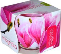 Świeca Szklanka Zapachowa - Magnolia