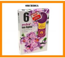 Podgrzewacze Zapachowe A'6 - Orchidea