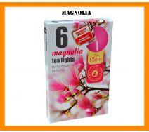 Podgrzewacze Zapachowe A'6 - Magnolia