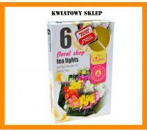 Podgrzewacze Zapachowe A'6 - Sklep kwiatowy
