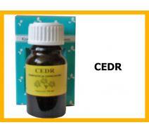 Olejek zapachowy CEDR