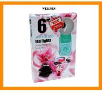 Podgrzewacze zapachowe A'6 - Wellness